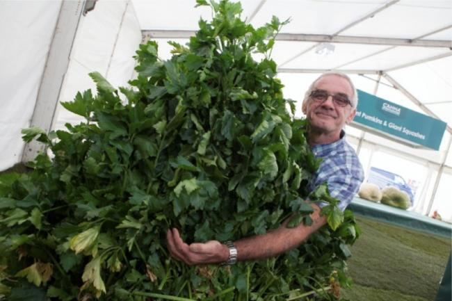 VEG: Gary Heeks is growing giant veg to recover from heart trouble