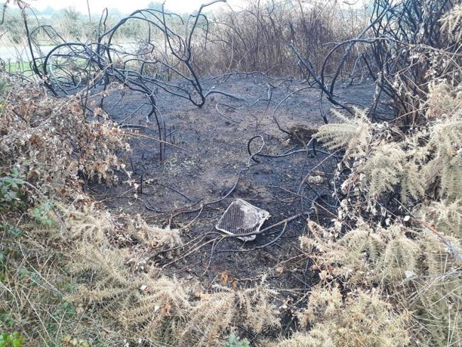 AFTERMATH: Disposable BBQ fire at Castlemorton Common, burning nearby dry grass