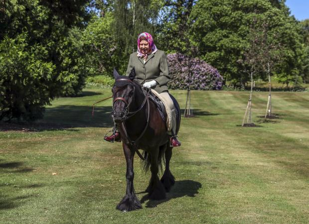 Malvern Gazette: Queen Elizabeth II was photographed riding Balmoral Fern, a 14-year-old Fell Pony, in Windsor Home Park over the weekend. Picture: PA Wire