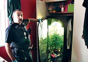 CRACKDOWN: PC Richard Foxall with the suspected cannabis plants