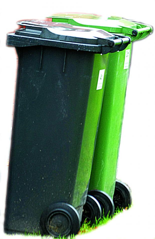 Wheelie bin plan still under attack