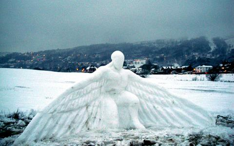 WINGS: Sculptor Ed Elliott took advantage of being snowed in to create this attention-grabbing creation in the shadow of the Malvern Hills.