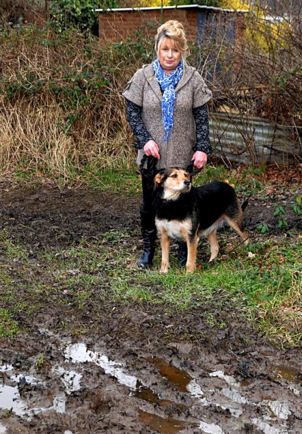PROUD: Owner Debbie Clarke with her dog Stilts who alerted her to a woman stuck in mud. Picture by Paul Jackson. 0813252 305.