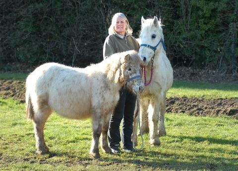 RESCUED: Sue Penny with the horses Gazette readers are being asked to name. Picture: Nick Toogood. 1113270601