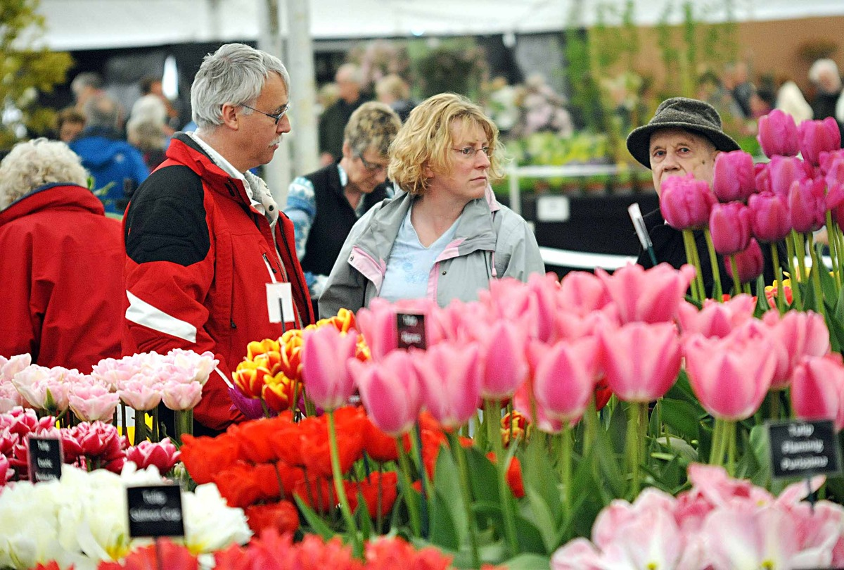BLOOMS: The Malvern Spring Gardening show will be known as RHS Malvern this year.