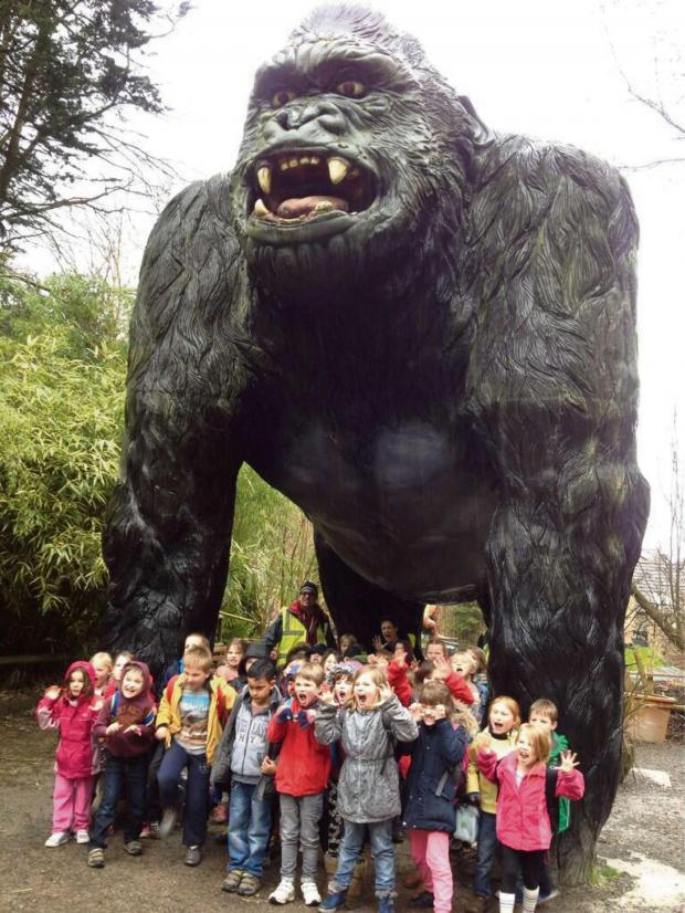 Malvern Gazette: Year two and three at Wookey Hole. (s)