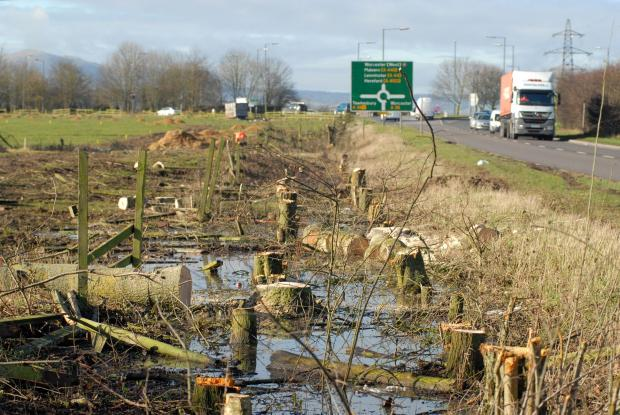 Trees have been removed from around the Ketch roundabout in Worcester