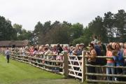 WELL ATTENDED: Crowds were lining the stables to see the horses