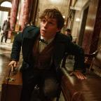 Malvern Gazette: Eddie Redmayne unveils new trailer for Fantastic Beasts And Where To Find Them