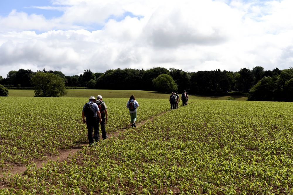 Walk with Worcester Ramblers