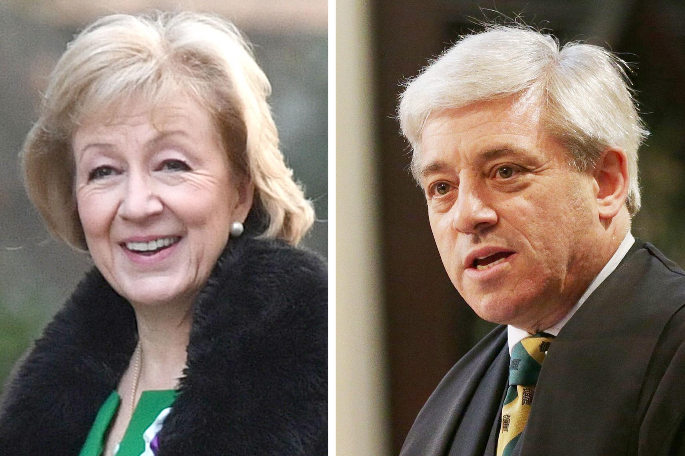 Speaker John Bercow has been accused of a foul-mouthed attack on Andrea Leadsom (PA)