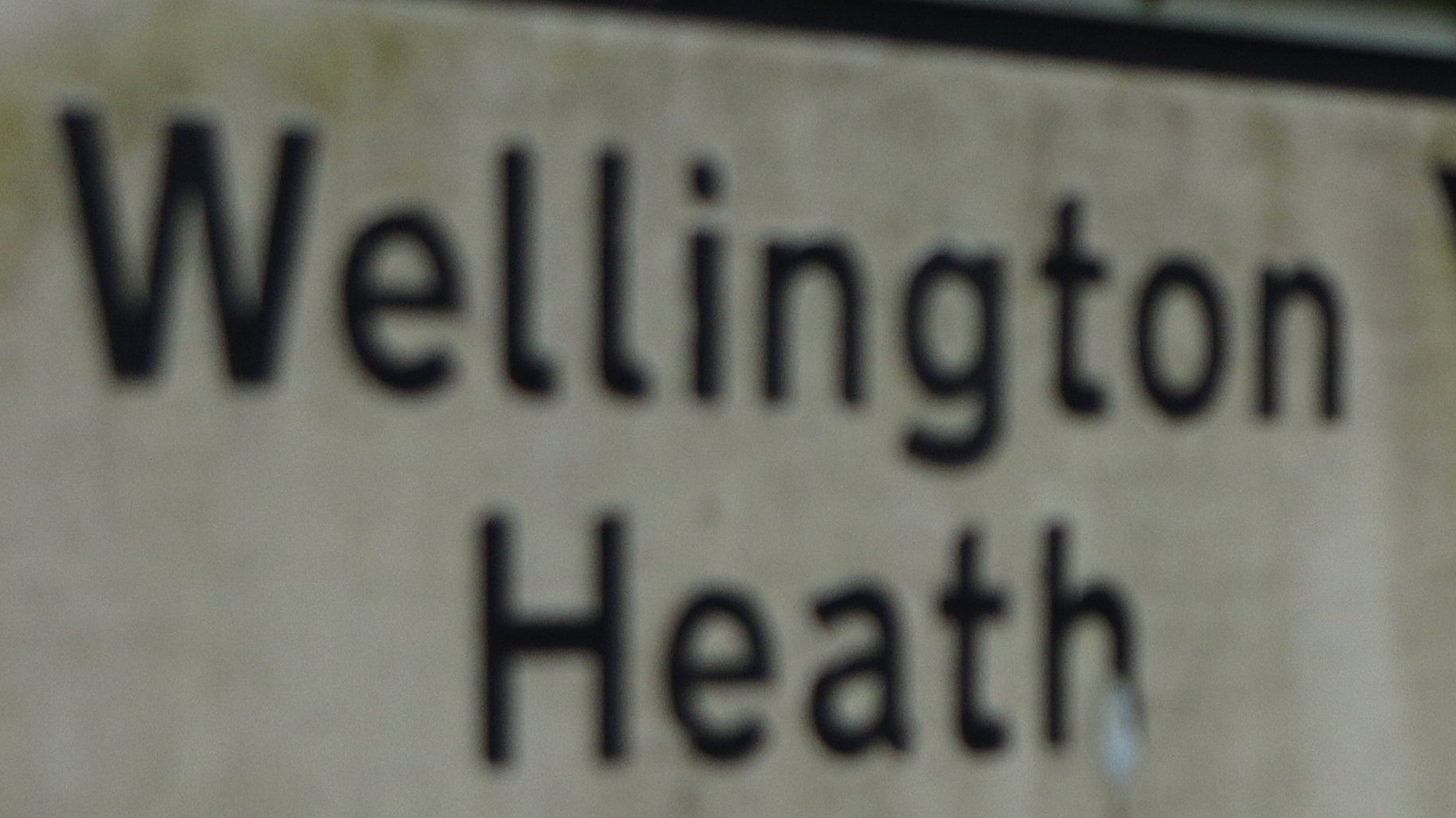 Wellington Heath