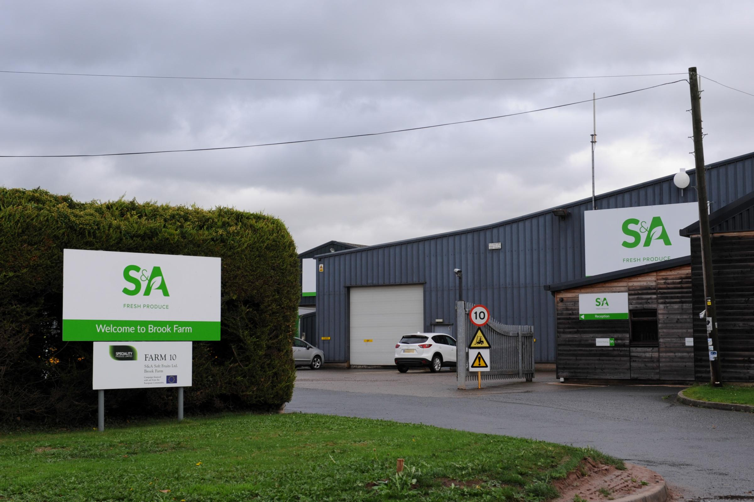 S & A Fresh Produce. Brook Farm, Marden.