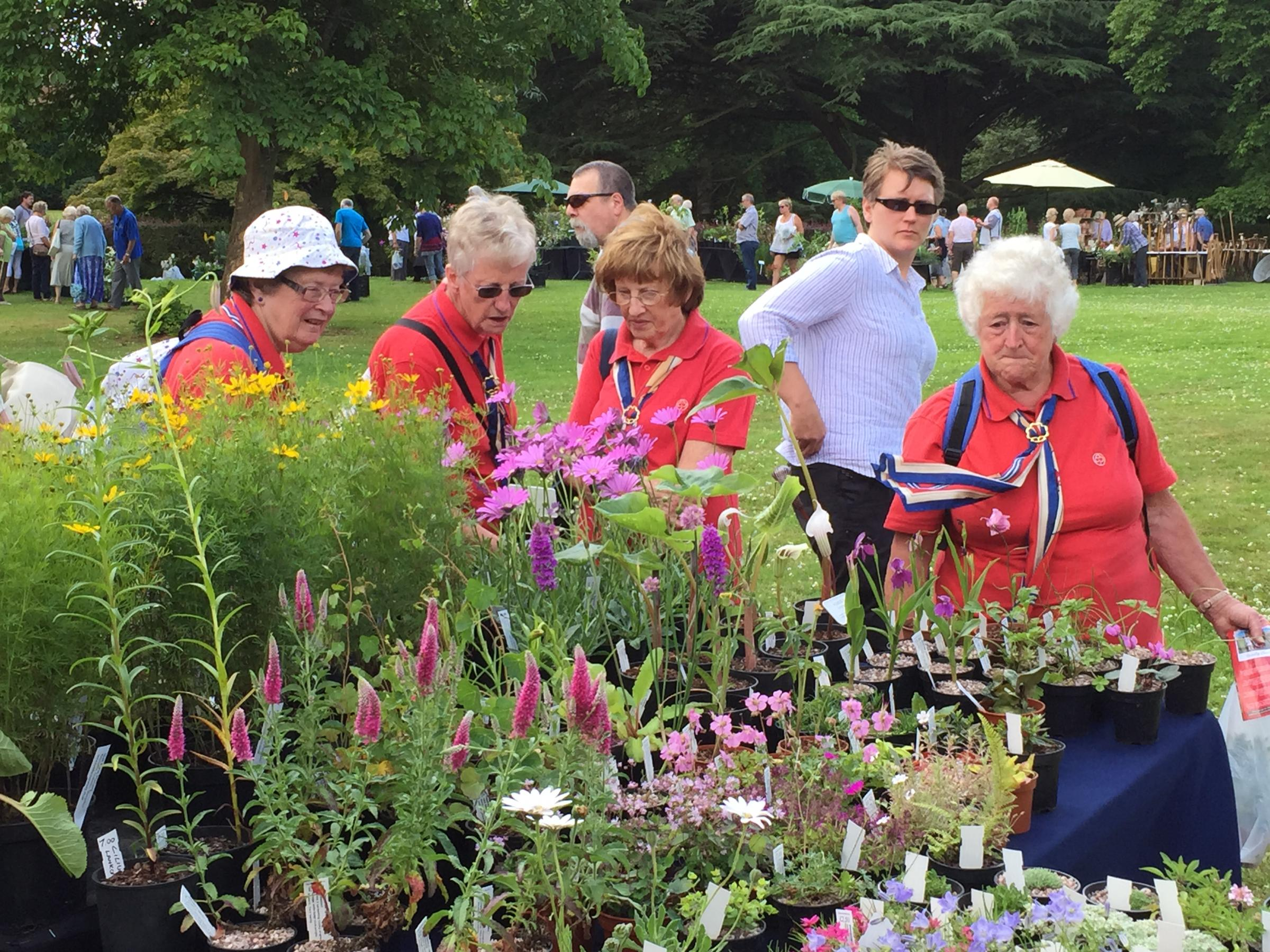 Plant Fair at Arley Arboretum on Saturday 22 June 2019