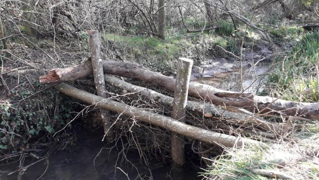 One of the floor barriers, made from tree trunks, in the Beesmoor Brook